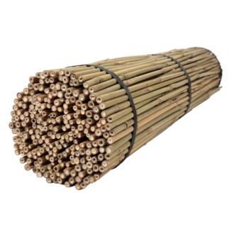 Tyczki bambusowe 120 cm 12/14 mm - 250 szt.