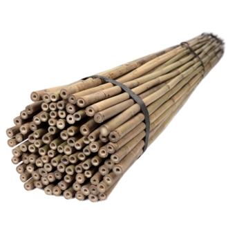 Tyczki bambusowe 180 cm 14/16 mm - 50 szt.